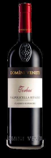 Valpolicella Ripasso TORBAE - Domini Veneti